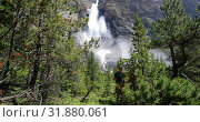 Купить «Front view of young caucasian hiker couple with backpack walking in dense forest on a sunny day 4k», видеоролик № 31880061, снято 16 июля 2018 г. (c) Wavebreak Media / Фотобанк Лори