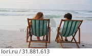 Купить «Rear view of young caucasian couple relaxing on sun lounger at beach on a sunny day 4k», видеоролик № 31881613, снято 14 ноября 2018 г. (c) Wavebreak Media / Фотобанк Лори