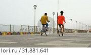 Купить «Rear view of black young couple riding bicycle on promenade at beach on a sunny day 4k», видеоролик № 31881641, снято 14 ноября 2018 г. (c) Wavebreak Media / Фотобанк Лори