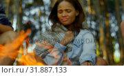 Купить «Woman roasting marshmallow on campfire 4k», видеоролик № 31887133, снято 12 октября 2018 г. (c) Wavebreak Media / Фотобанк Лори