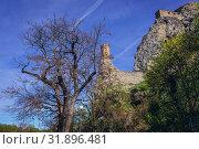 Castle in Devin, borough of Bratislava, one of the oldest castles in Slovakia. Стоковое фото, фотограф Konrad Zelazowski / easy Fotostock / Фотобанк Лори