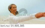 Купить «Side view of active senior African American woman exercising on exercise mat at the beach 4k», видеоролик № 31905385, снято 14 ноября 2018 г. (c) Wavebreak Media / Фотобанк Лори