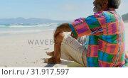 Купить «Side view of thoughtful active senior African American man relaxing on beach in the sunshine 4k», видеоролик № 31917597, снято 14 ноября 2018 г. (c) Wavebreak Media / Фотобанк Лори