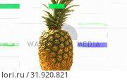 Купить «Front view of a pineapple turning on itself», видеоролик № 31920821, снято 5 марта 2019 г. (c) Wavebreak Media / Фотобанк Лори