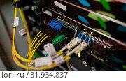 Купить «Series connection on circuit boards», видеоролик № 31934837, снято 26 марта 2019 г. (c) Wavebreak Media / Фотобанк Лори