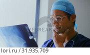 Male doctor examining x-ray report 4k. Стоковое видео, агентство Wavebreak Media / Фотобанк Лори