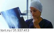 Female doctor examining x-ray report 4k. Стоковое видео, агентство Wavebreak Media / Фотобанк Лори