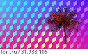 Colorful diamond patterns and palm tree. Стоковое видео, агентство Wavebreak Media / Фотобанк Лори
