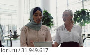 Купить «Businesswomen interacting with each other in the lobby at office 4k», видеоролик № 31949617, снято 21 марта 2019 г. (c) Wavebreak Media / Фотобанк Лори