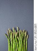Купить «Heap of fresh natural asparagus on a gray background.», фото № 31953681, снято 24 мая 2019 г. (c) Ярослав Данильченко / Фотобанк Лори