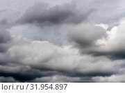 Купить «Непогода, дождевые облака на мрачном небе», фото № 31954897, снято 20 июля 2019 г. (c) А. А. Пирагис / Фотобанк Лори
