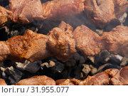 Купить «Шашлык из мяса свиньи на шампуре», фото № 31955077, снято 14 июля 2019 г. (c) А. А. Пирагис / Фотобанк Лори