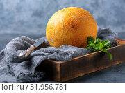 Купить «Ripe yellow melon», фото № 31956781, снято 2 августа 2019 г. (c) Марина Сапрунова / Фотобанк Лори