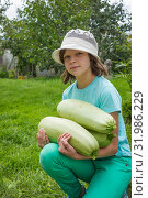 Купить «Девочка держит на руках три больших кабачка», фото № 31986229, снято 5 августа 2019 г. (c) Александр Романов / Фотобанк Лори
