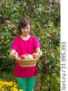 Купить «Девочка под яблоней с корзинкой яблок», фото № 31995393, снято 8 августа 2019 г. (c) Александр Романов / Фотобанк Лори