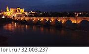 Купить «Roman bridge and Mosque-cathedral of Cordoba in night. Spain», видеоролик № 32003237, снято 21 мая 2019 г. (c) Яков Филимонов / Фотобанк Лори