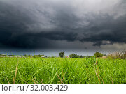 Купить «The Summer countryside landscape with a thundercloud», фото № 32003429, снято 8 августа 2019 г. (c) Володина Ольга / Фотобанк Лори