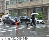 Купить «Walk with two dogs in heavy rain. Manhattan, New York City», фото № 32009949, снято 12 мая 2019 г. (c) Валерия Попова / Фотобанк Лори