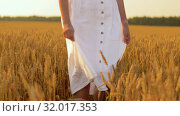 Купить «woman in white dress walking along cereal field», видеоролик № 32017353, снято 4 августа 2019 г. (c) Syda Productions / Фотобанк Лори