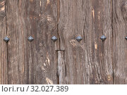 Купить «Wooden texture with metal rivets», фото № 32027389, снято 20 ноября 2019 г. (c) Яков Филимонов / Фотобанк Лори