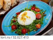 Купить «Salad with Italian burrata cheese; arugula and cherry tomatoes», фото № 32027413, снято 20 сентября 2019 г. (c) Яков Филимонов / Фотобанк Лори