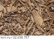 Купить «Beautiful horizontal texture of brown bark and wood chips of conifer tree with knots and cracks for mulching of soil is in the photo», фото № 32038757, снято 6 июля 2020 г. (c) Татьяна Куклина / Фотобанк Лори