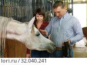 Купить «Portrait of man and woman with roan horse», фото № 32040241, снято 26 ноября 2018 г. (c) Яков Филимонов / Фотобанк Лори