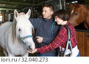 Купить «Portrait of man and woman with roan horse», фото № 32040273, снято 26 ноября 2018 г. (c) Яков Филимонов / Фотобанк Лори