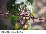 Купить «Barbed wire tied to a pole, close-up», фото № 32040521, снято 25 марта 2019 г. (c) Олег Белов / Фотобанк Лори