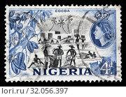 Cocoa beans harvest, postage stamp, Nigeria, 1953. (2010 год). Редакционное фото, фотограф Ivan Vdovin / age Fotostock / Фотобанк Лори