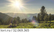 Купить «Mountain meadow timelapse. Wild nature and rural field. Clouds, trees, green grass and sun rays movement. Camera motion.», видеоролик № 32069365, снято 18 июля 2019 г. (c) Александр Маркин / Фотобанк Лори