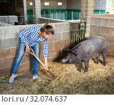 Купить «Portrait of female farmer feeding iberian pigs on farm», фото № 32074637, снято 22 сентября 2019 г. (c) Яков Филимонов / Фотобанк Лори