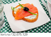 Купить «Salmon and cucumber on toasted baguette with cream sauce», фото № 32075129, снято 28 марта 2020 г. (c) Яков Филимонов / Фотобанк Лори