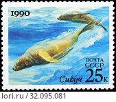 Steller sea lion, northern sea lion, Eumetopias jubatus, postage stamp, Russia, USSR, 1990. (2015 год). Редакционное фото, фотограф Ivan Vdovin / age Fotostock / Фотобанк Лори