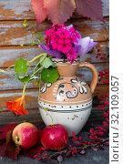 Купить «Осенний дачный натюрморт», фото № 32109057, снято 31 августа 2019 г. (c) Галина Савина / Фотобанк Лори