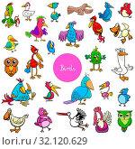 Cartoon Illustration of Birds Animal Characters Big Collection. Стоковое фото, фотограф Zoonar.com/Igor Zakowski / easy Fotostock / Фотобанк Лори
