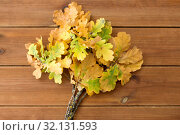 Купить «oak leaves in autumn colors on wooden table», фото № 32131593, снято 13 сентября 2018 г. (c) Syda Productions / Фотобанк Лори