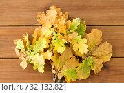 Купить «oak leaves in autumn colors on wooden table», фото № 32132821, снято 13 сентября 2018 г. (c) Syda Productions / Фотобанк Лори