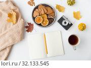 Купить «notebook, hot chocolate, camera and autumn leaves», фото № 32133545, снято 26 октября 2018 г. (c) Syda Productions / Фотобанк Лори