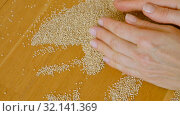 Top view of female hands playing with white quinoa seeds on wooden background. Healthy eating concept. Стоковое видео, видеограф Ольга Балынская / Фотобанк Лори