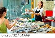 Купить «Smiling woman seller preparing raw langoustines for female buyer at seafood market, weighing order on scales», фото № 32154669, снято 6 апреля 2020 г. (c) Яков Филимонов / Фотобанк Лори