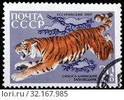 Купить «Siberian Tiger, Panthera tigris altaica, Fauna of Sikhote-Alin Nature Reserve, postage stamp, Russia, USSR, 1970.», фото № 32167985, снято 4 января 2011 г. (c) age Fotostock / Фотобанк Лори
