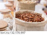Купить «Photo of mix pecan», фото № 32170997, снято 4 сентября 2017 г. (c) Яков Филимонов / Фотобанк Лори