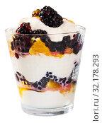 Купить «Blackberry and orange yoghurt - delicious summer dessert», фото № 32178293, снято 5 апреля 2020 г. (c) Яков Филимонов / Фотобанк Лори