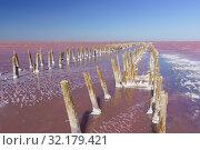 Вид на останки деревянной плотины на розовом соленом озере Сасык-Сиваш в Крыму (2019 год). Стоковое фото, фотограф Наталья Гармашева / Фотобанк Лори