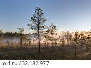 Купить «Fog over a small forest lake and swamp», фото № 32182977, снято 19 августа 2015 г. (c) Argument / Фотобанк Лори