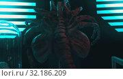 Купить «An arachnid alien with many limbs - a sample of alien in laboratory», видеоролик № 32186209, снято 20 октября 2019 г. (c) Константин Шишкин / Фотобанк Лори