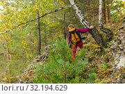 Купить «Young fir tree in a mountain forest, in the background in the blur a woman is engaged in trekking», фото № 32194629, снято 15 сентября 2019 г. (c) Евгений Харитонов / Фотобанк Лори