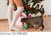 Купить «woman, cat and gift boxes under christmas tree», фото № 32198601, снято 15 октября 2016 г. (c) Syda Productions / Фотобанк Лори