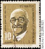 Купить «Почтовая марка Турции», эксклюзивное фото № 32208921, снято 1 февраля 2019 г. (c) Игорь Низов / Фотобанк Лори